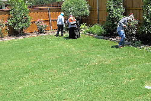 Lawn Care Dallas