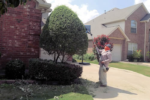 Garden Services Fort Worth